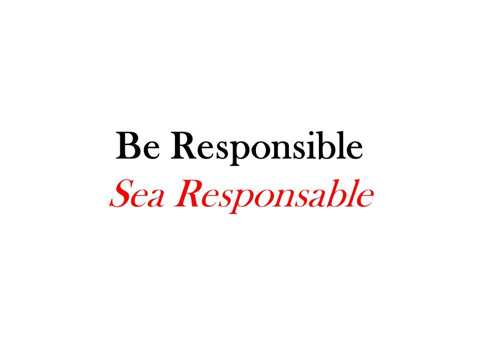 Be Respectful Sea Respetuoso