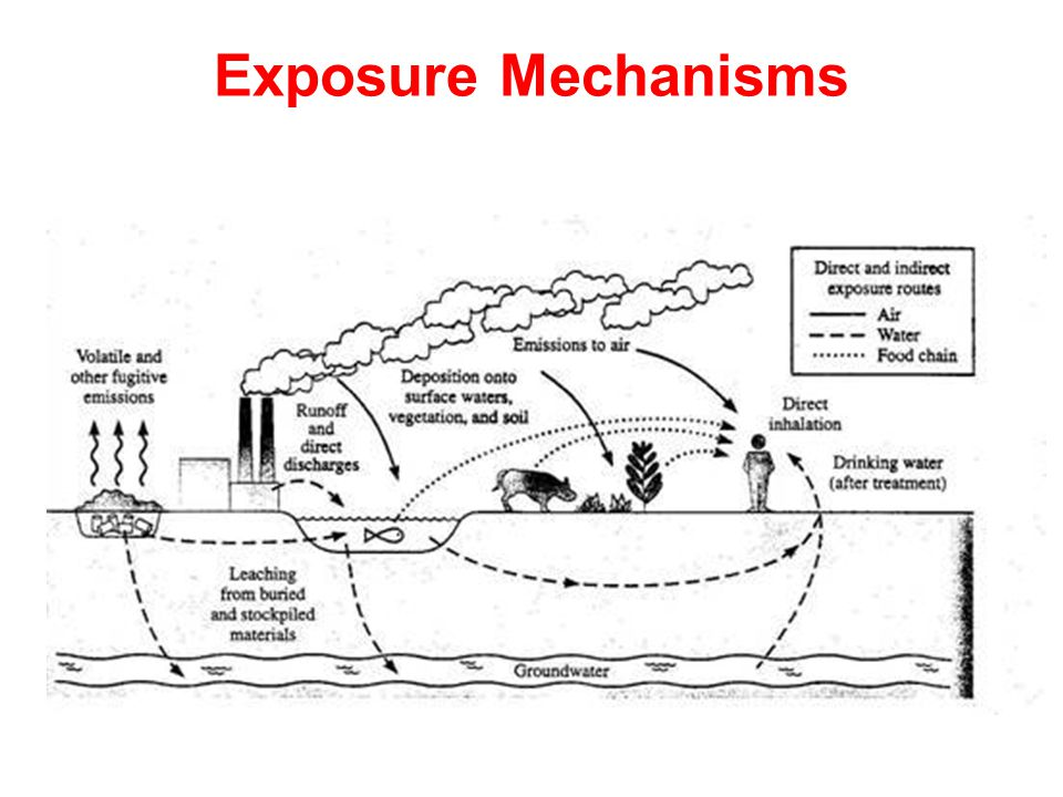 Exposure Mechanisms