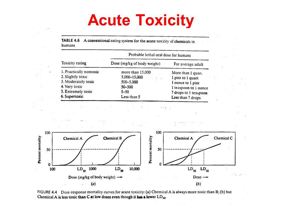 Bioconcentration Accumulation of pollutants