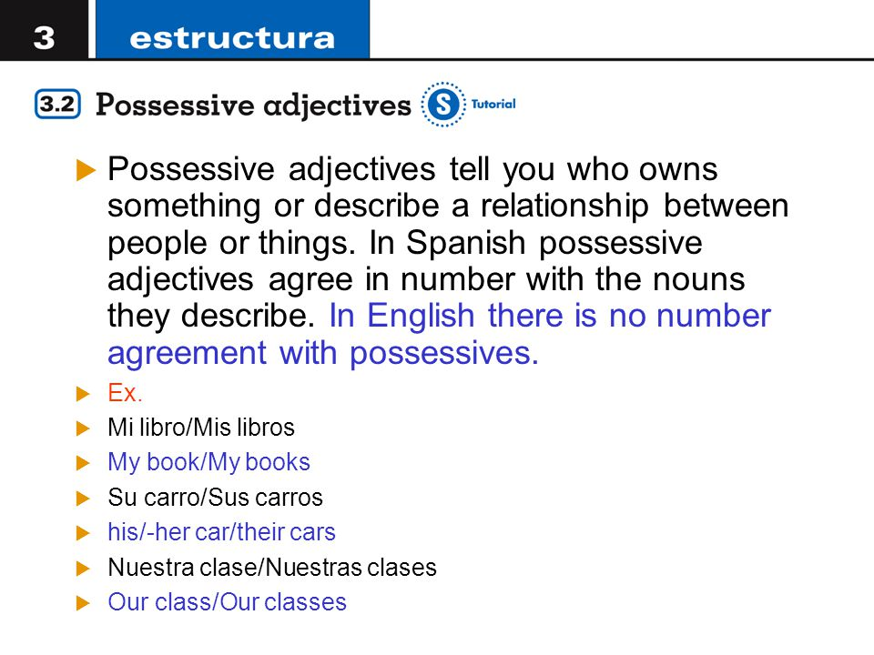  Possessive adjectives tell you who owns something or describe a relationship between people or things.