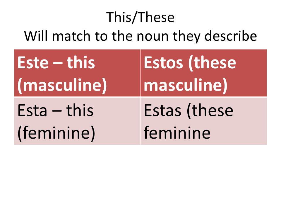This/These Will match to the noun they describe Este – this (masculine) Estos (these masculine) Esta – this (feminine) Estas (these feminine