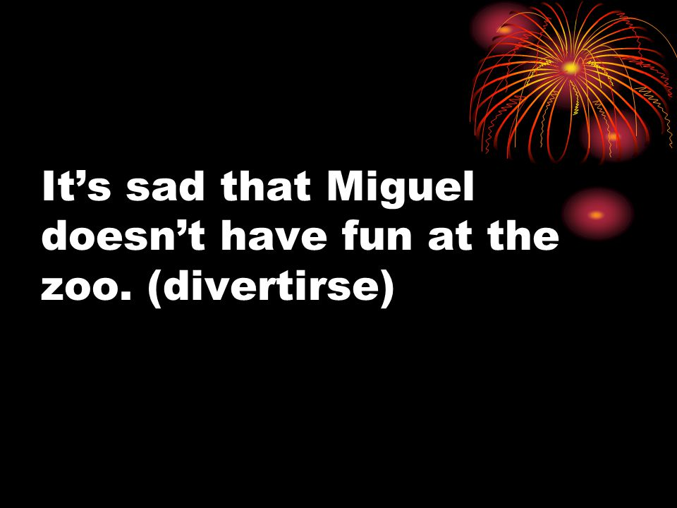 It's sad that Miguel doesn't have fun at the zoo. (divertirse)
