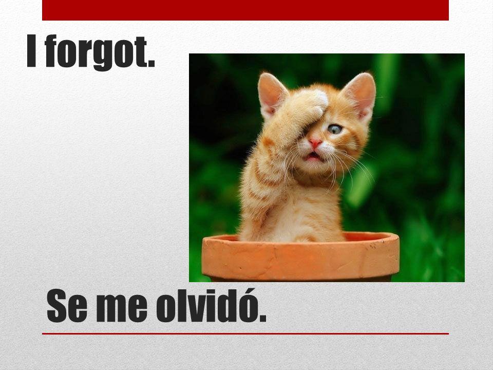 Se me olvidó. I forgot.