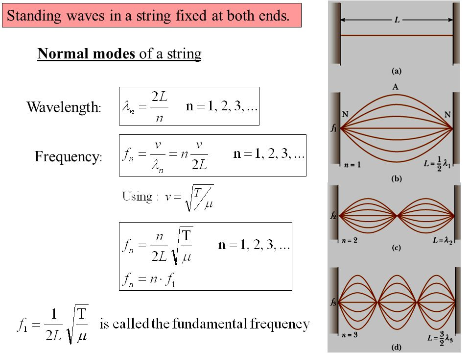 Standing waves in a string fixed at both ends.