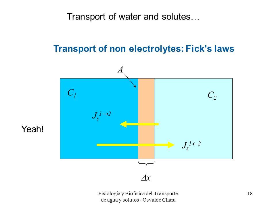 Fisiología y Biofísica del Transporte de agua y solutos - Osvaldo Chara 18 Transport of non electrolytes: Fick s laws xx C2C2 C1C1 A Js12Js12 Js12Js12 Yeah.