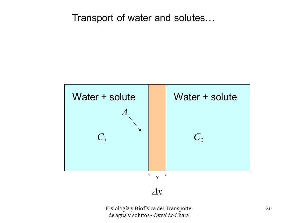 Fisiología y Biofísica del Transporte de agua y solutos - Osvaldo Chara 26 xx A C1C1 C2C2 Water + solute Transport of water and solutes…