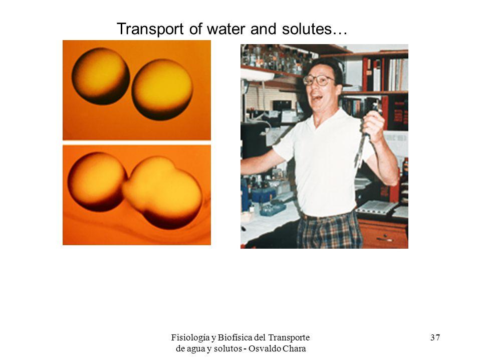 Fisiología y Biofísica del Transporte de agua y solutos - Osvaldo Chara 37 Transport of water and solutes…