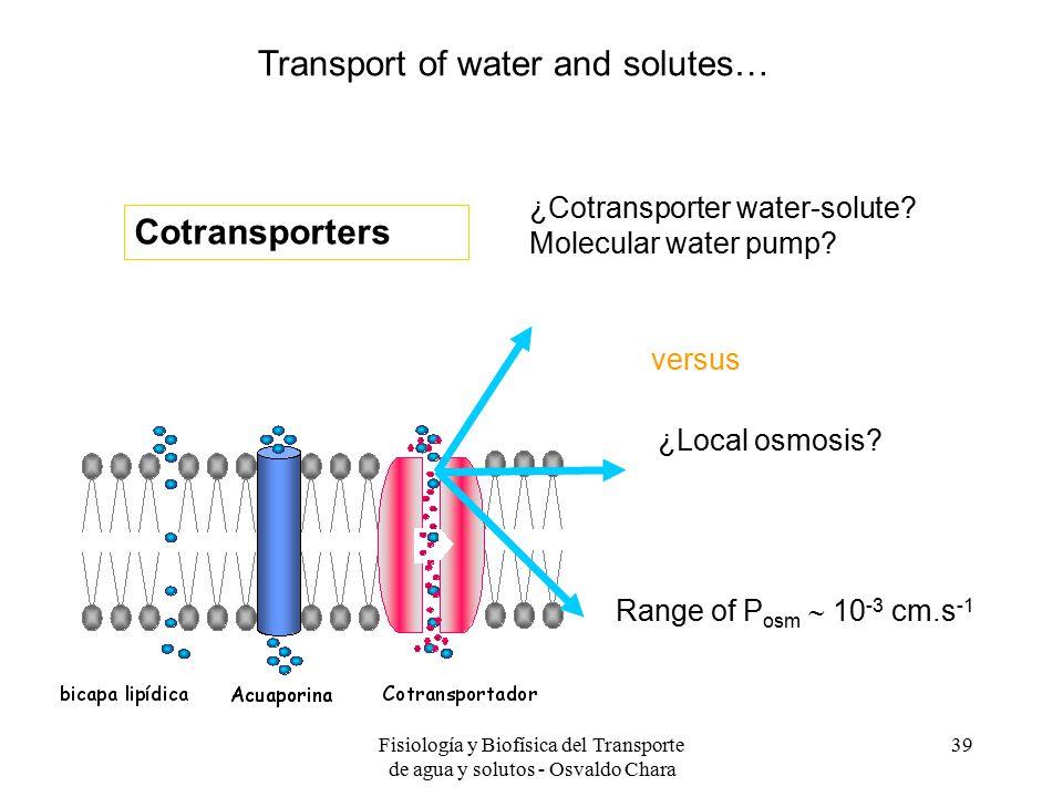 Fisiología y Biofísica del Transporte de agua y solutos - Osvaldo Chara 39 versus ¿Cotransporter water-solute.