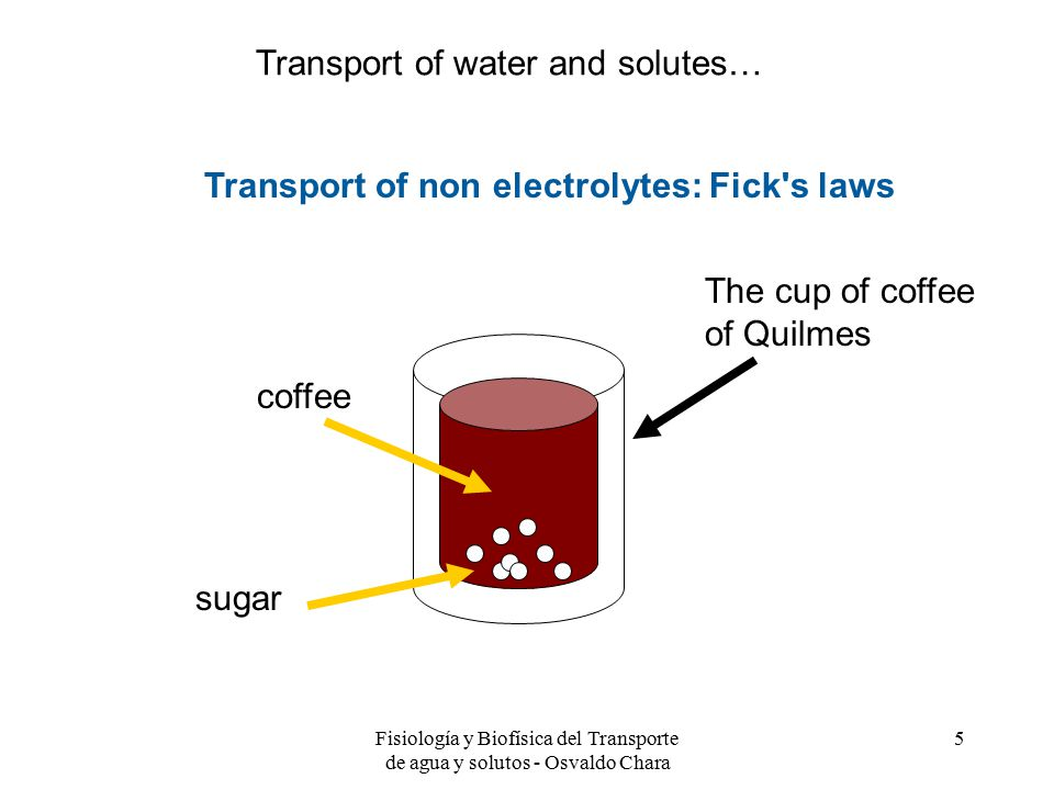 Fisiología y Biofísica del Transporte de agua y solutos - Osvaldo Chara 5 Transport of non electrolytes: Fick s laws sugar coffee Transport of water and solutes… The cup of coffee of Quilmes