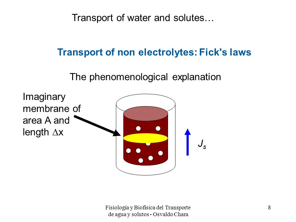 Fisiología y Biofísica del Transporte de agua y solutos - Osvaldo Chara 8 Transport of non electrolytes: Fick s laws The phenomenological explanation Imaginary membrane of area A and length  x JsJs Transport of water and solutes…