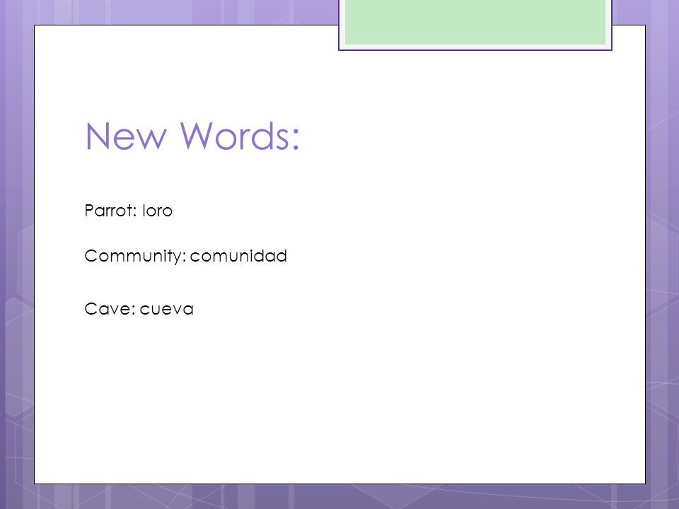 New Words: Parrot: loro Community: comunidad Cave: cueva
