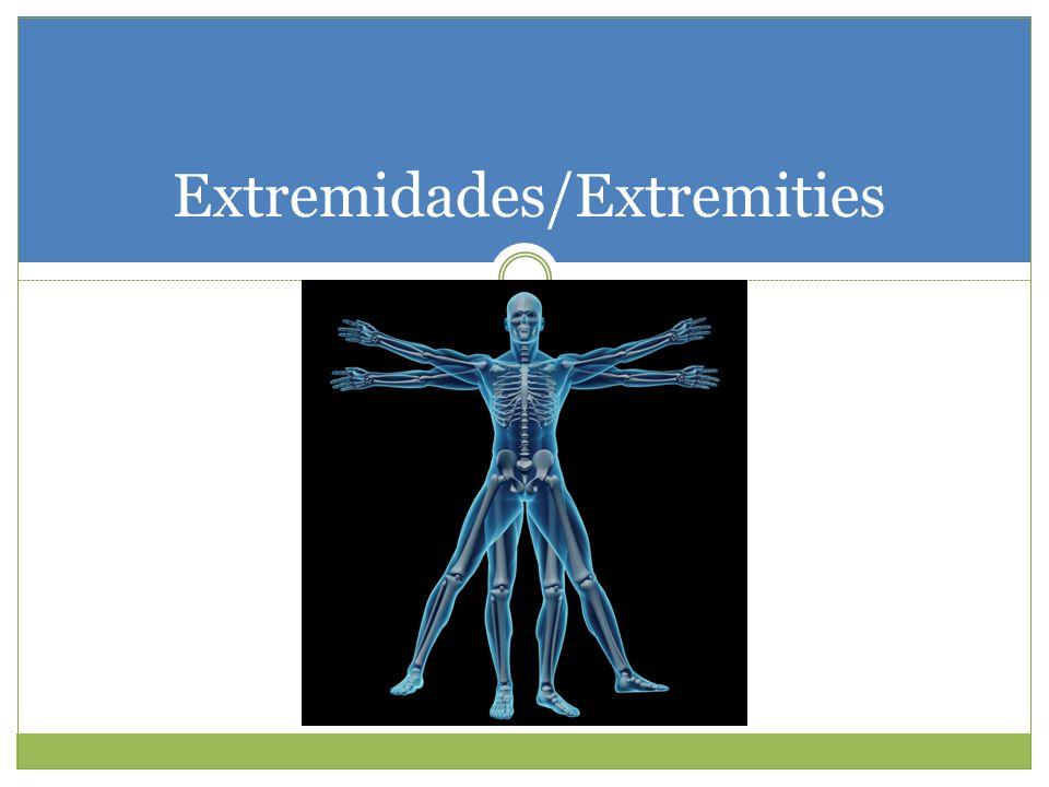 Extremidades/Extremities