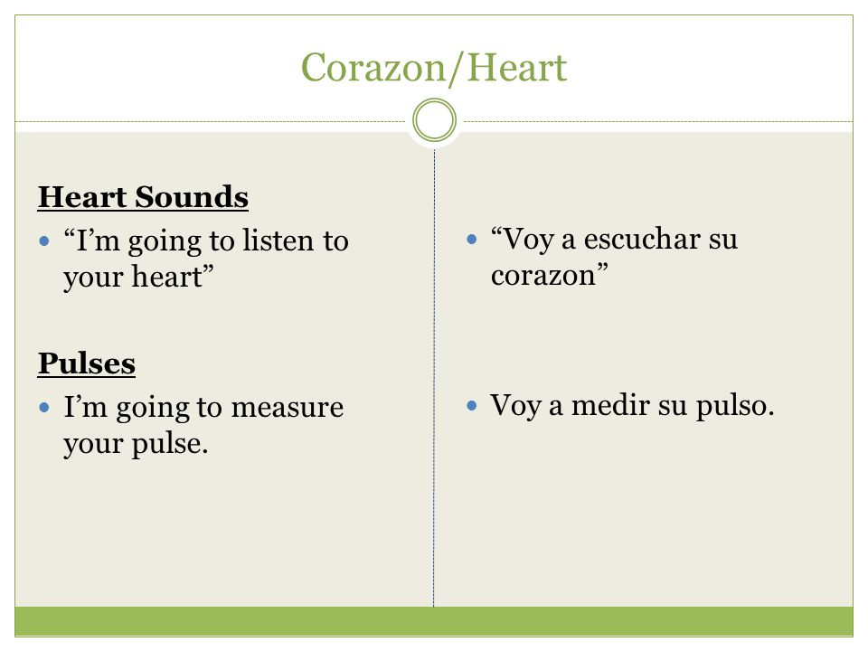 Corazon/Heart Heart Sounds I'm going to listen to your heart Pulses I'm going to measure your pulse.