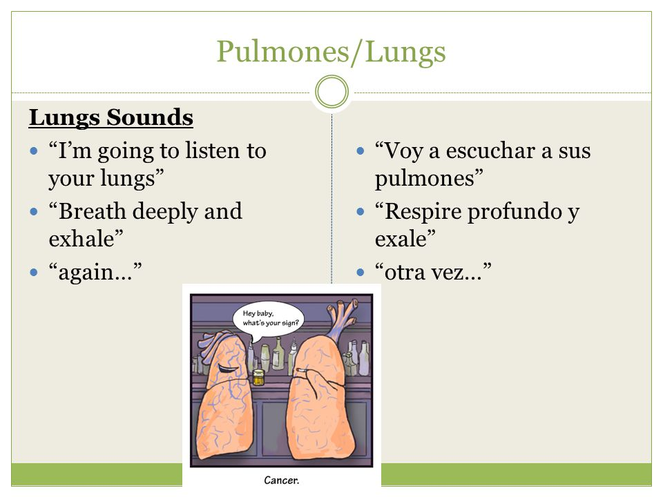 "Pulmones/Lungs Lungs Sounds ""I'm going to listen to your lungs"" ""Breath deeply and exhale"" ""again…"" ""Voy a escuchar a sus pulmones"" ""Respire profundo"