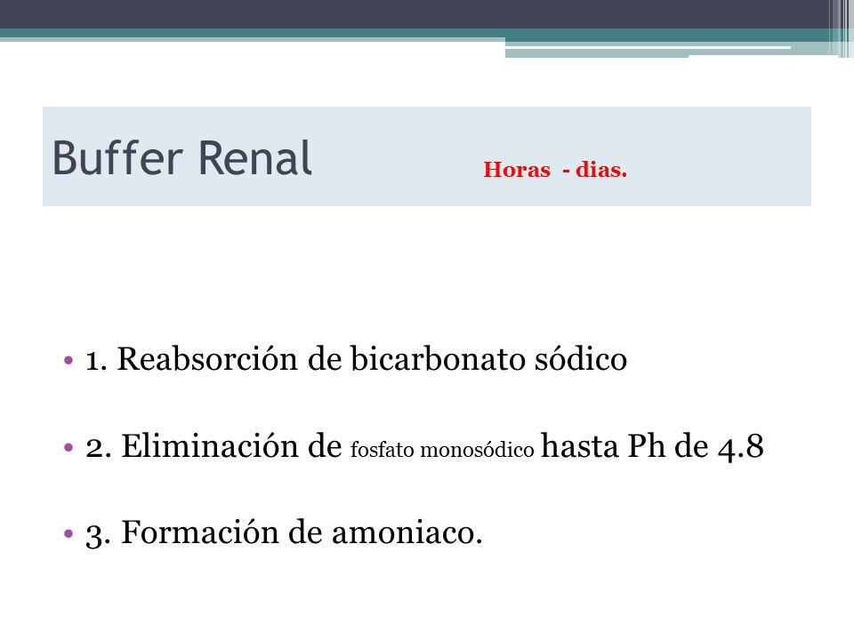 Buffer Renal 1. Reabsorción de bicarbonato sódico 2.
