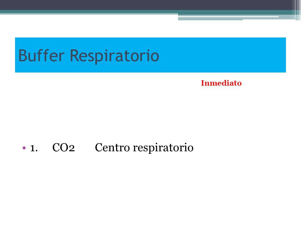 Buffer Respiratorio 1. CO2 Centro respiratorio Inmediato