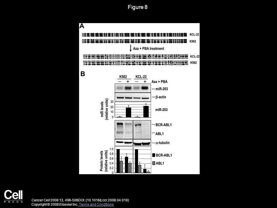 Figure 8 Cancer Cell 2008 13, 496-506DOI: (10.1016/j.ccr.2008.04.018) Copyright © 2008 Elsevier Inc.
