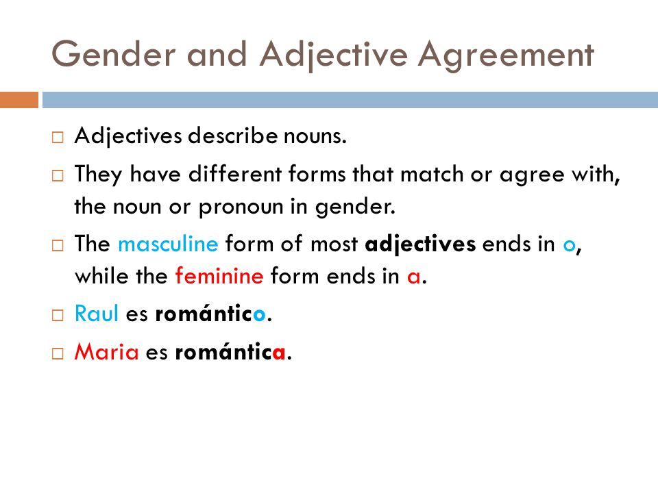 Gender and Adjective Agreement  Adjectives describe nouns.