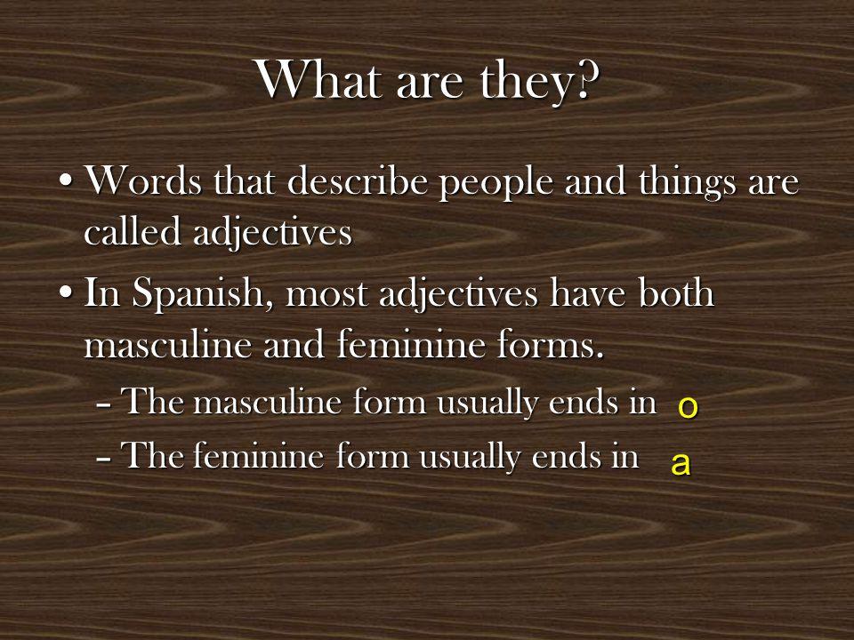 Masculine adjectives are used to describe masculine nounsMasculine adjectives are used to describe masculine nouns –Marco es ordenado y simpático Feminine adjectives are used to describe feminine nounsFeminine adjectives are used to describe feminine nouns –Marta es ordenada y simpática