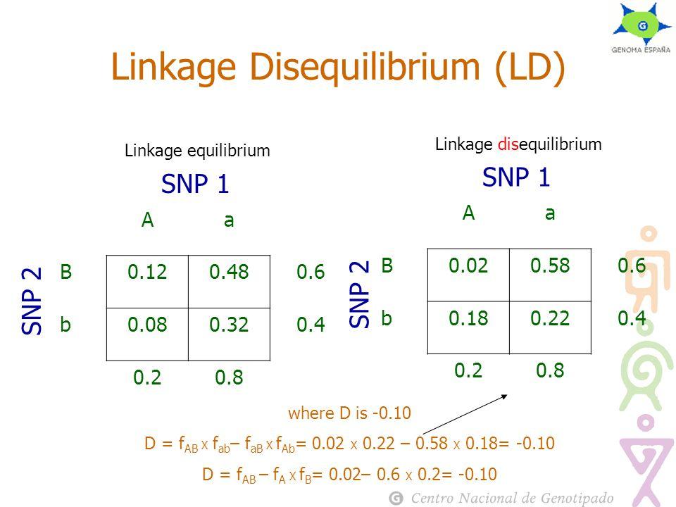 Linkage equilibrium Linkage Disequilibrium (LD) Aa B0.120.480.6 b0.080.320.4 0.20.8 SNP 1 SNP 2 Linkage disequilibrium Aa B0.020.580.6 b0.180.220.4 0.20.8 SNP 1 SNP 2 where D is -0.10 D = f AB Х f ab – f aB Х f Ab = 0.02 Х 0.22 – 0.58 Х 0.18= -0.10 D = f AB – f A Х f B = 0.02– 0.6 Х 0.2= -0.10
