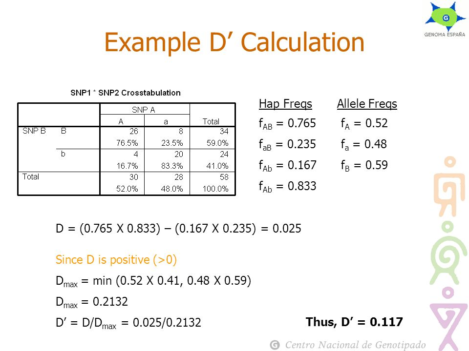 Example D' Calculation f AB = 0.765 f aB = 0.235 f Ab = 0.167 f Ab = 0.833 f A = 0.52 f a = 0.48 f B = 0.59 f b = 0.41 Hap FreqsAllele Freqs D = (0.765 Χ 0.833) – (0.167 Χ 0.235) = 0.025 Since D is positive (>0) D max = min (0.52 Χ 0.41, 0.48 Χ 0.59) D max = 0.2132 D' = D/D max = 0.025/0.2132 Thus, D' = 0.117
