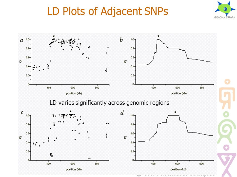 LD Plots of Adjacent SNPs LD varies significantly across genomic regions