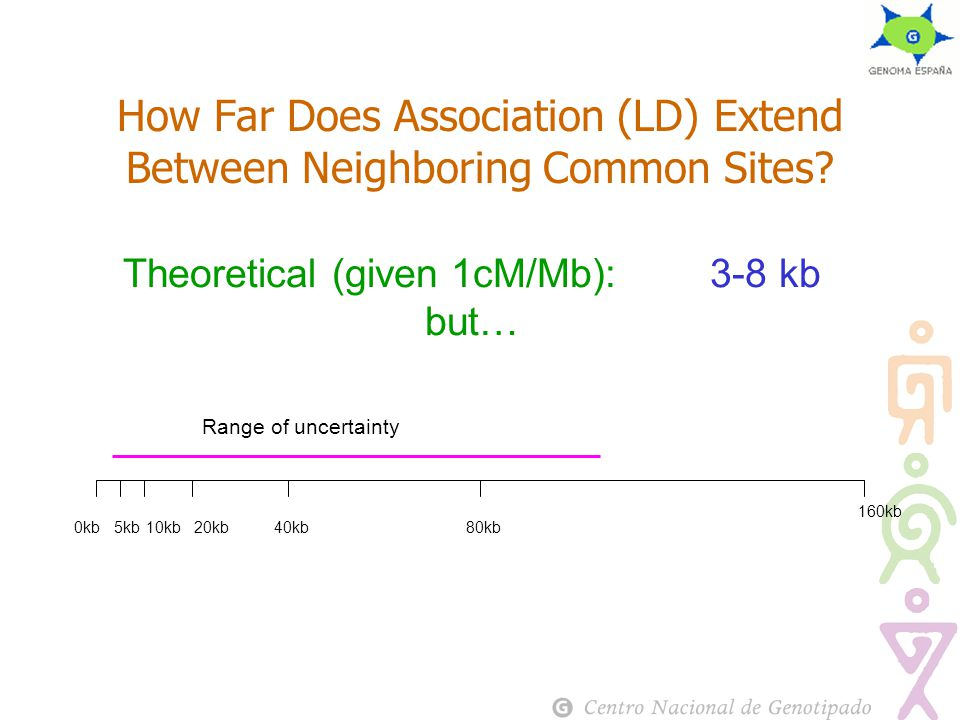 How Far Does Association (LD) Extend Between Neighboring Common Sites.
