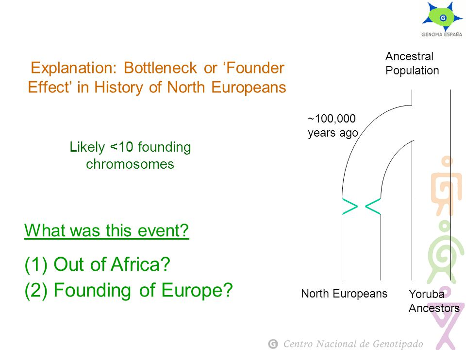 Explanation: Bottleneck or 'Founder Effect' in History of North Europeans What was this event.