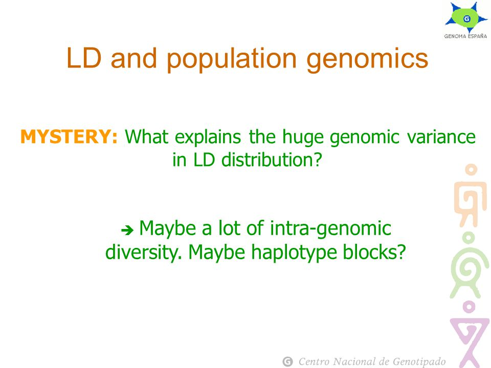 MYSTERY: What explains the huge genomic variance in LD distribution.