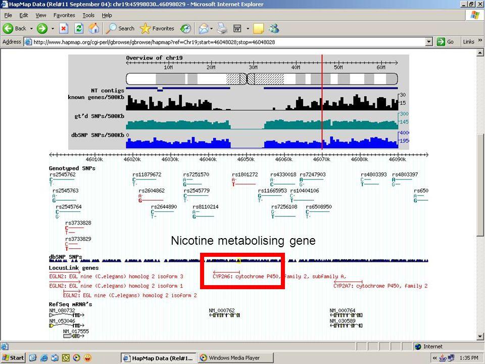 Nicotine metabolising gene
