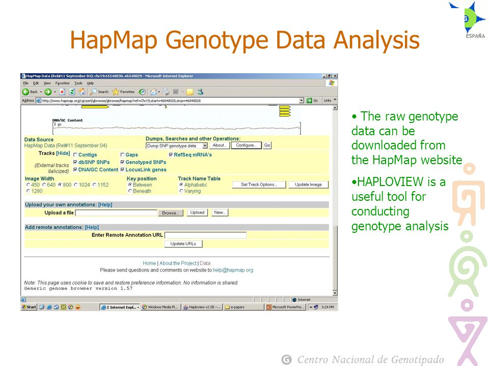 HapMap Genotype Data Analysis The raw genotype data can be downloaded from the HapMap website HAPLOVIEW is a useful tool for conducting genotype analysis