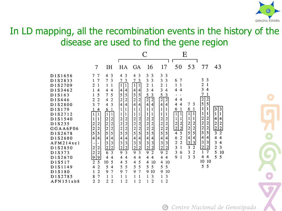 In LD mapping, all the recombination events in the history of the disease are used to find the gene region