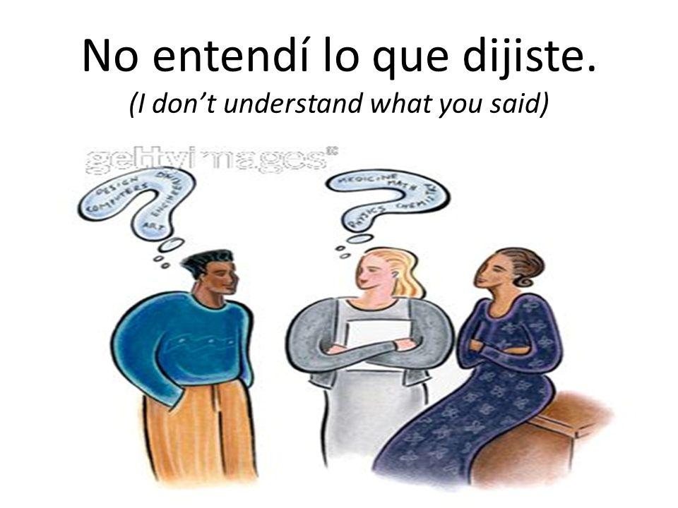 No entendí lo que dijiste. (I don't understand what you said)