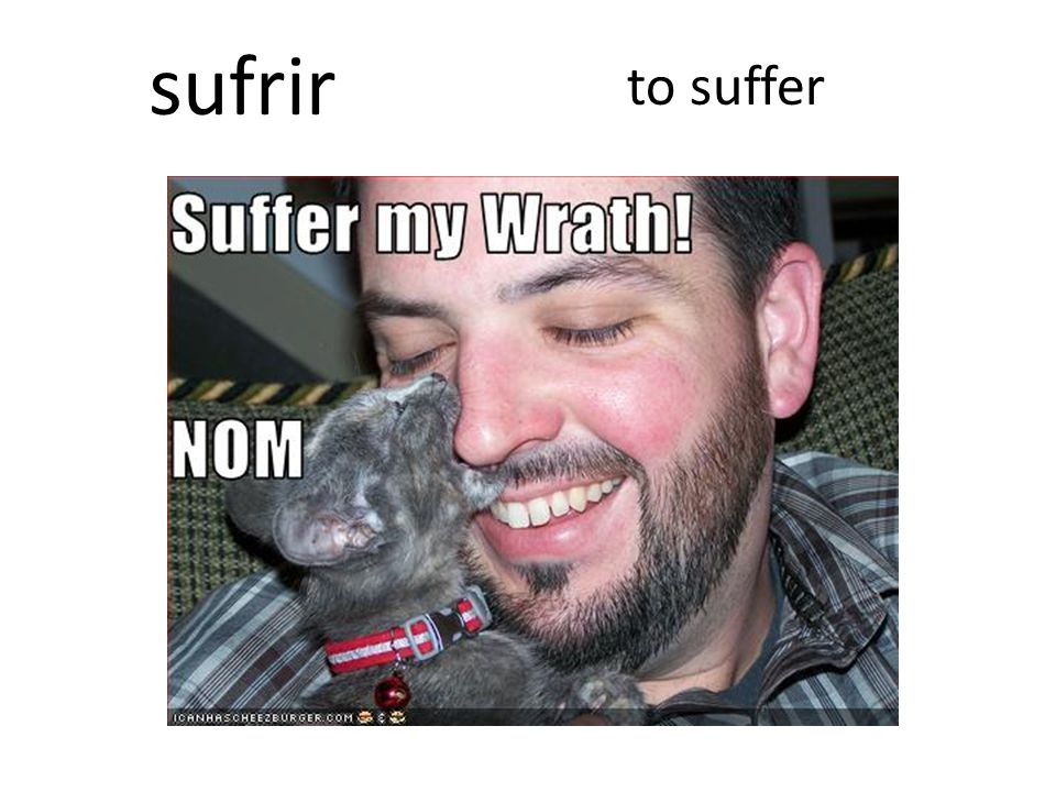 to suffer sufrir