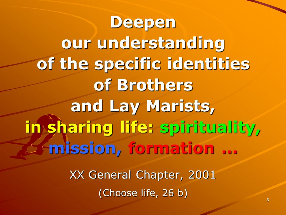 3 Deepen our understanding of the specific identities of Brothers and Lay Marists, in sharing life: spirituality, mission, formation … XX General Chapter, 2001 (Choose life, 26 b)