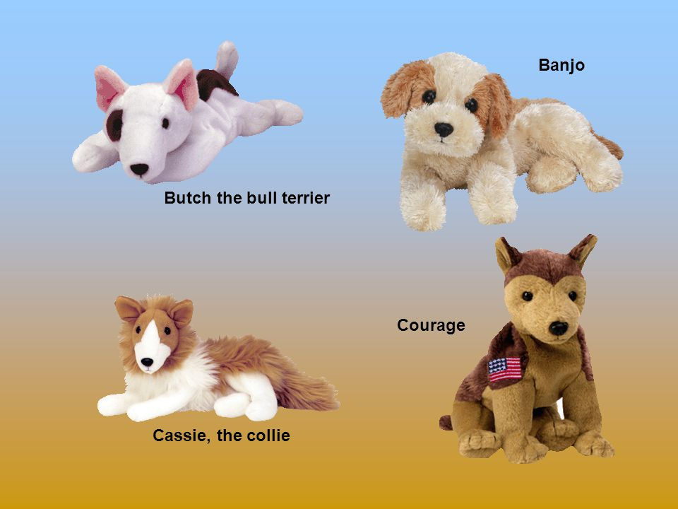 Bo Bones Bruno the terrier Bernie the st. bernard Badges