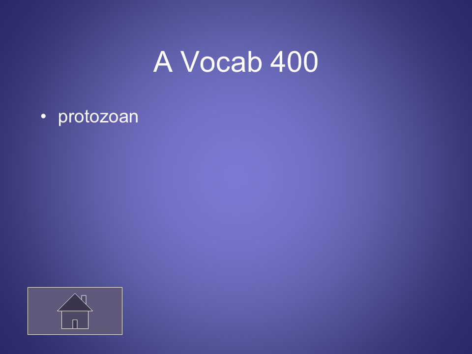 A Vocab 400 protozoan