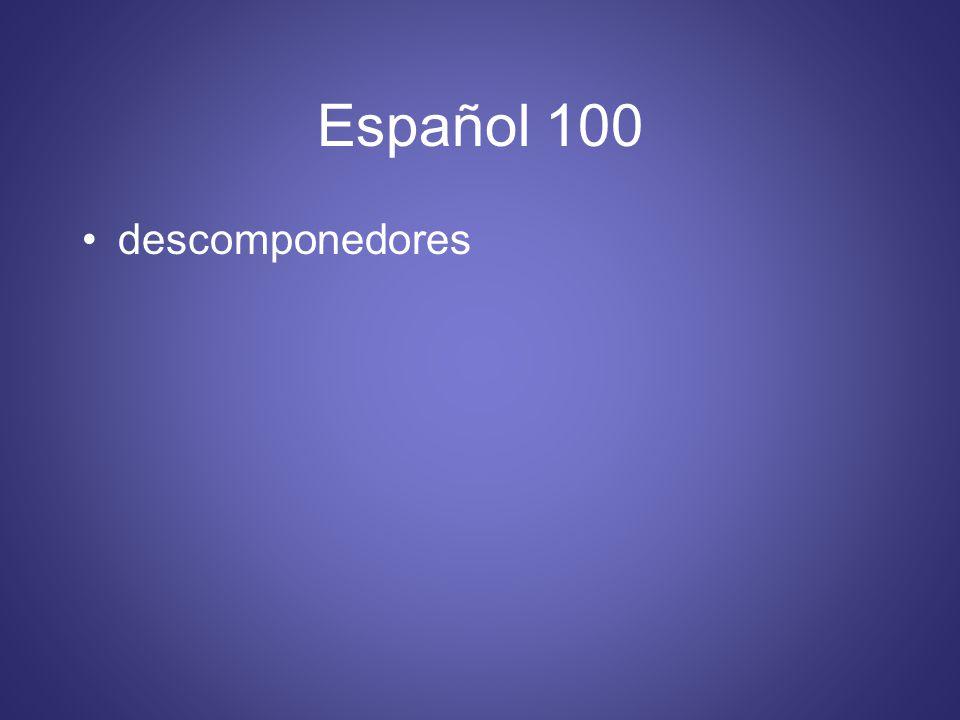 Español 100 descomponedores