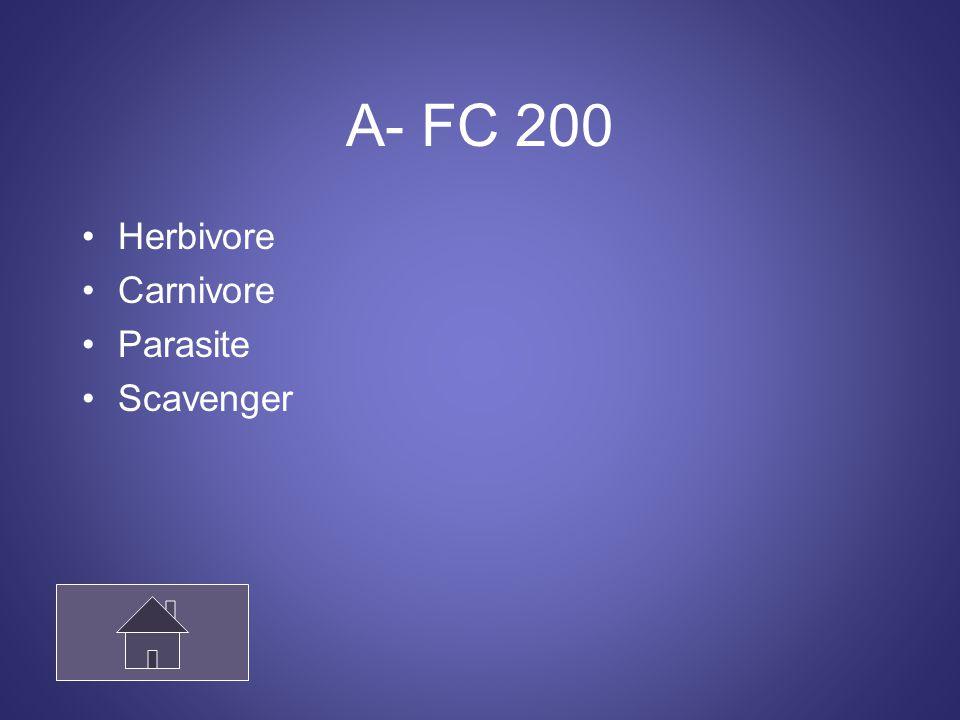 A- FC 200 Herbivore Carnivore Parasite Scavenger