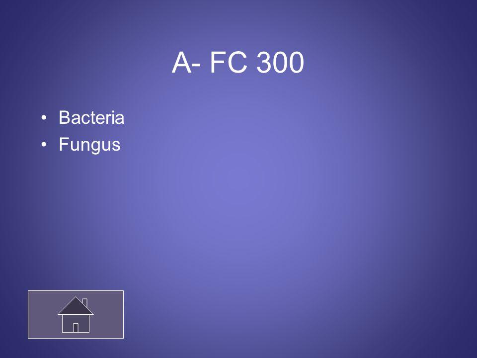 A- FC 300 Bacteria Fungus