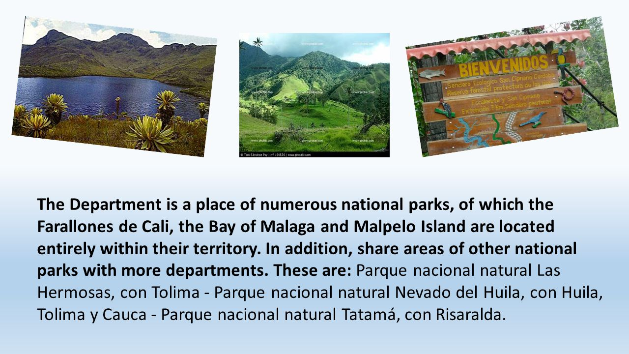 The Department is a place of numerous national parks, of which the Farallones de Cali, the Bay of Malaga and Malpelo Island are located entirely withi