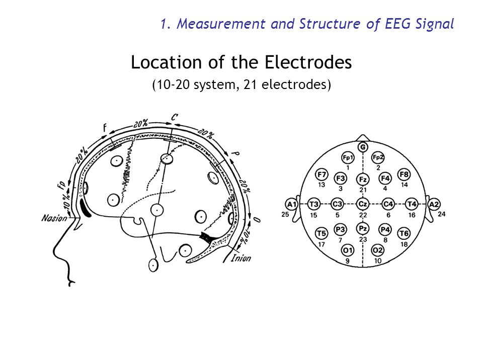 1. Measurement and Structure of EEG Signal Location of the Electrodes (10-20 system, 21 electrodes)