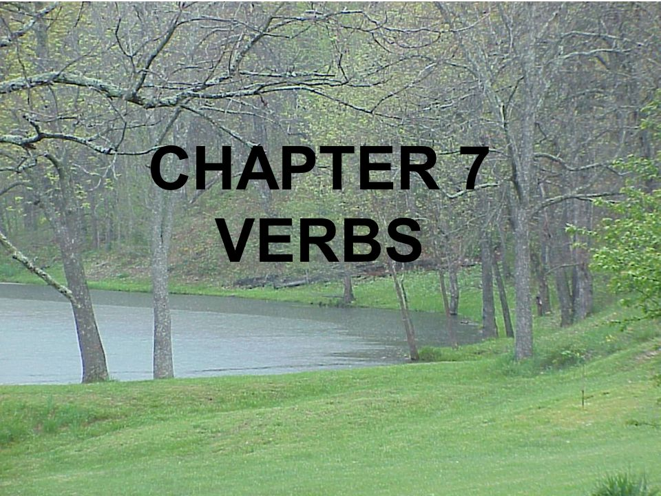 CHAPTER 7 VERBS