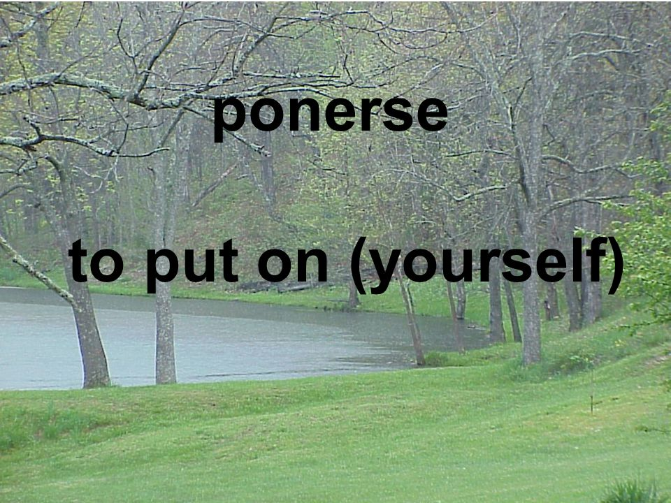 ponerse to put on (yourself)