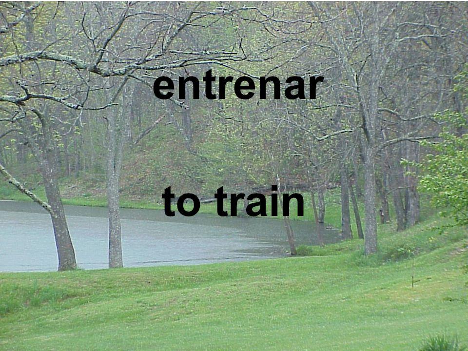 entrenar to train