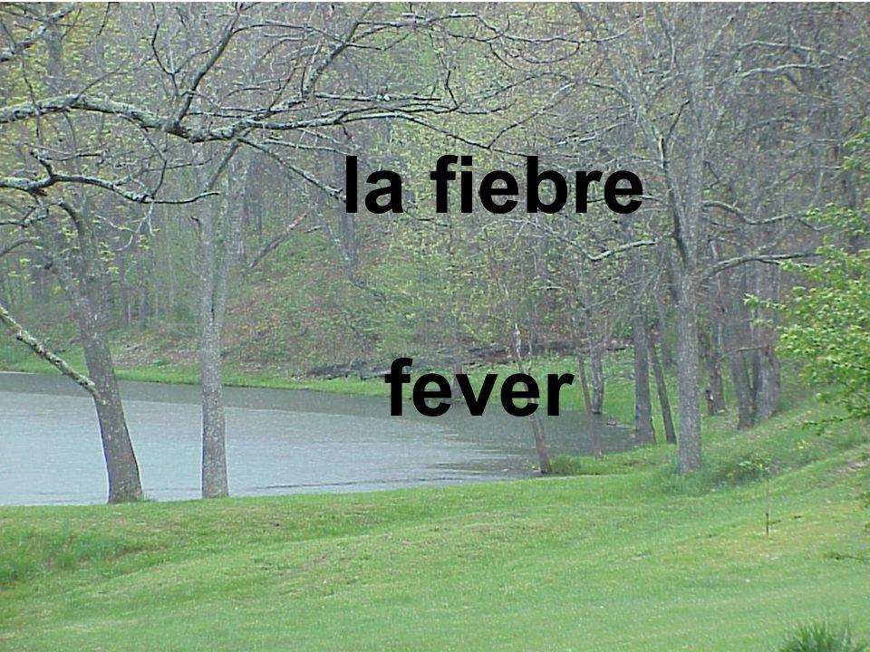 la fiebre fever
