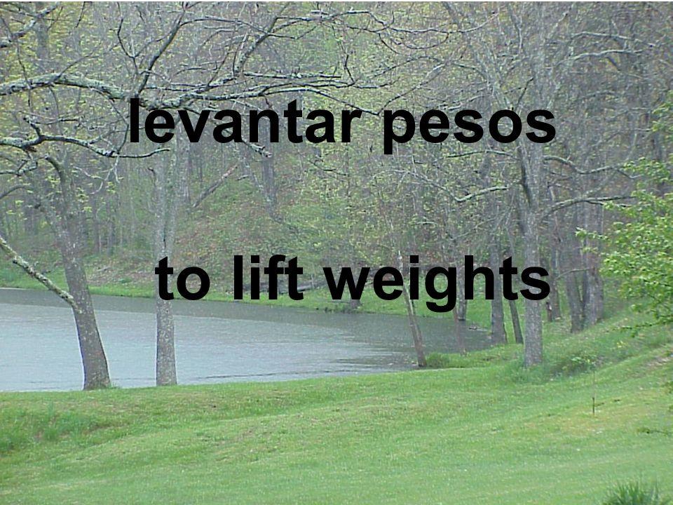 levantar pesos to lift weights