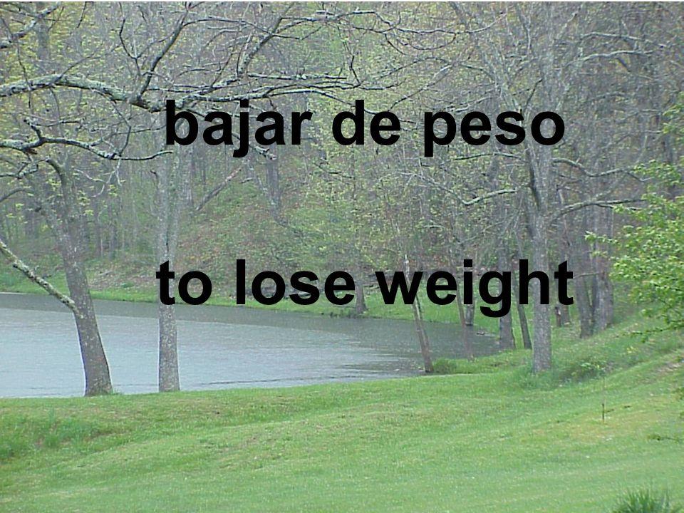 bajar de peso to lose weight