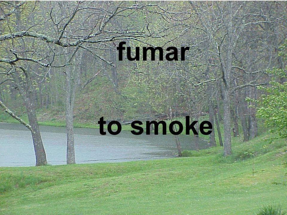 fumar to smoke