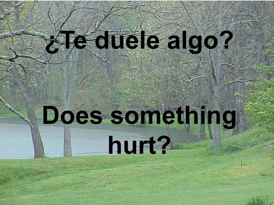 ¿Te duele algo? Does something hurt?